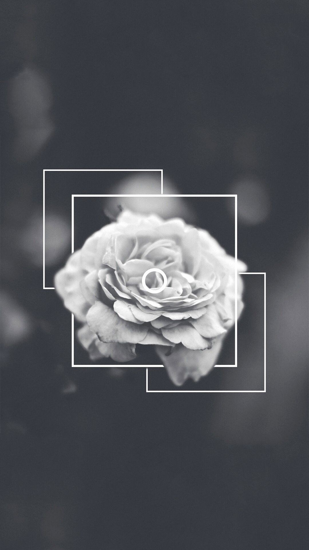 Aesthetic Black and White Wallpapers on ...