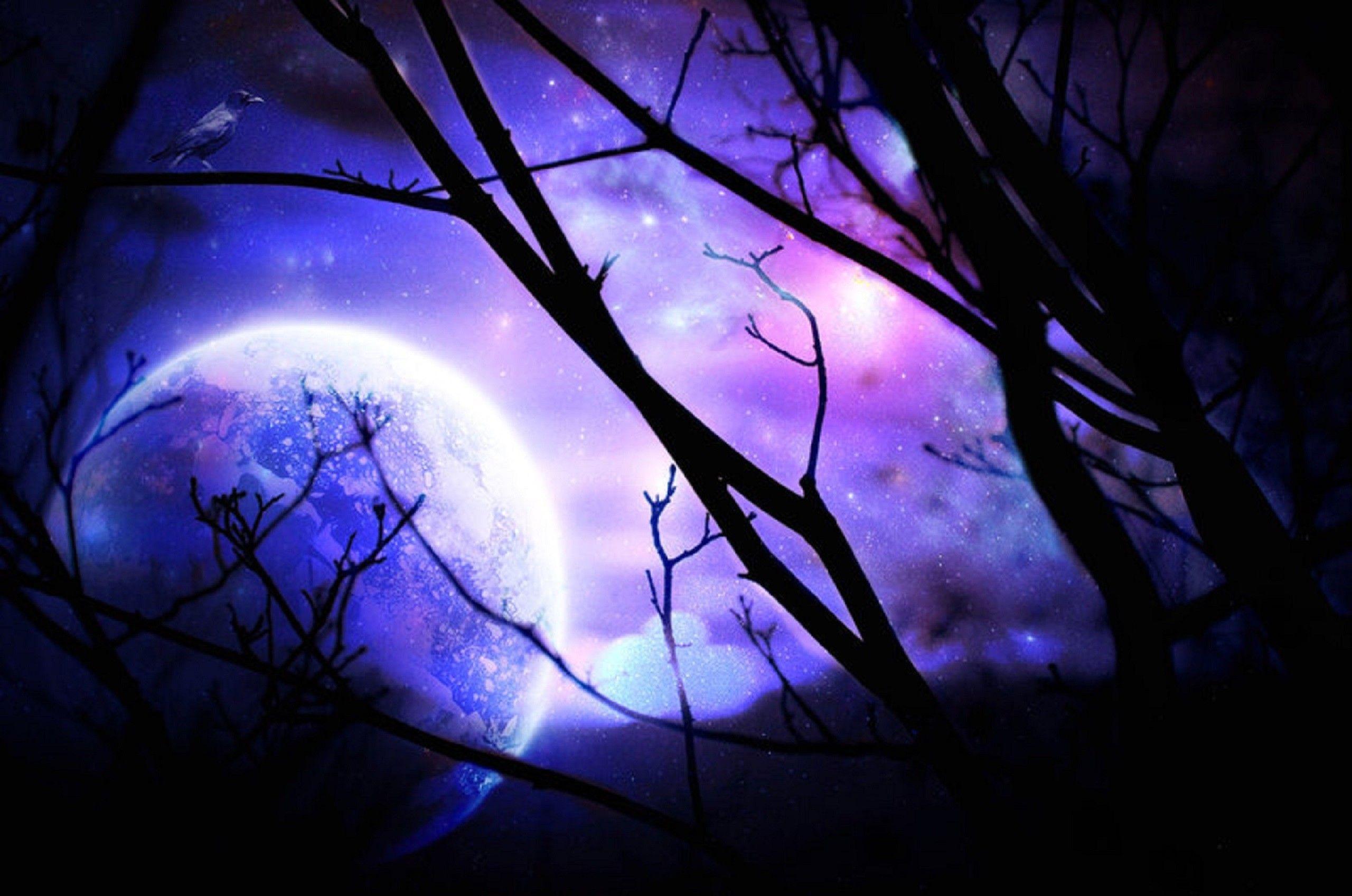 Purple Moon Wallpapers on WallpaperDog