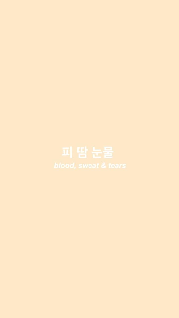 Korean Aesthetic Wallpapers On Wallpaperdog