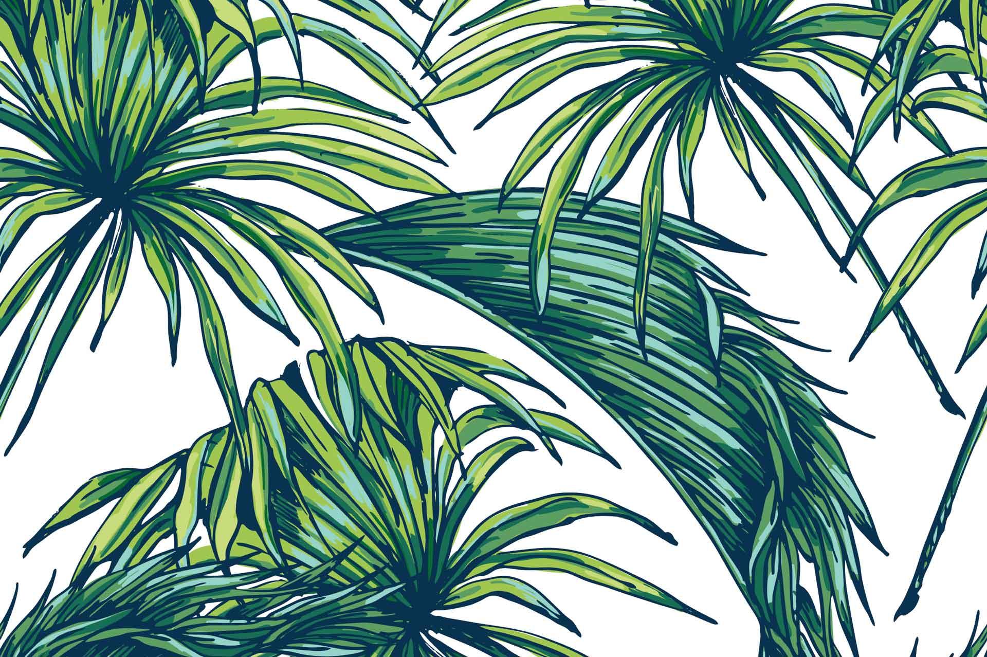 Palm Leaf Wallpapers On Wallpaperdog