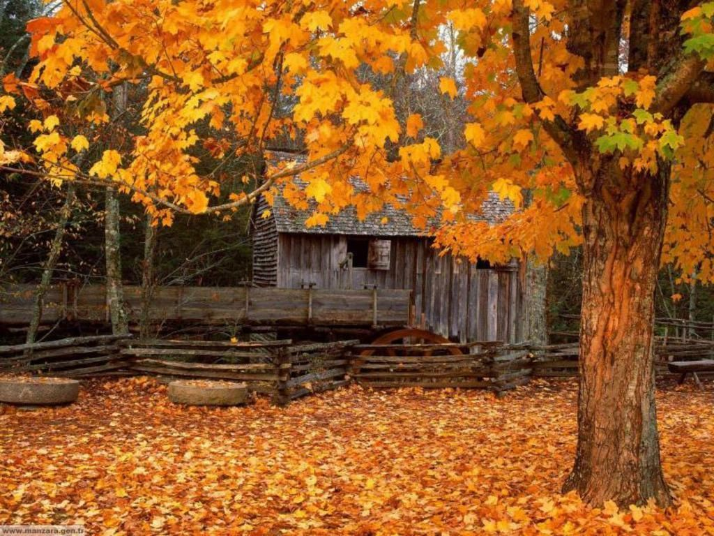 Fall Scenes Wallpapers On Wallpaperdog