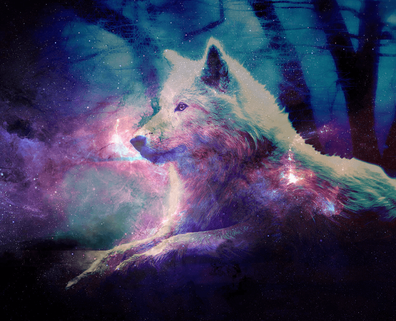 Spiet Galaxy Wolves Wallpapers On Wallpaperdog
