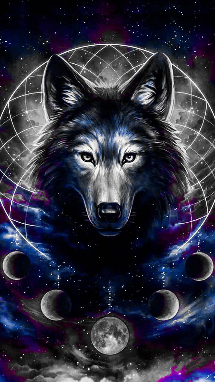 Unicorn Galaxy Wolf Wallpapers On Wallpaperdog