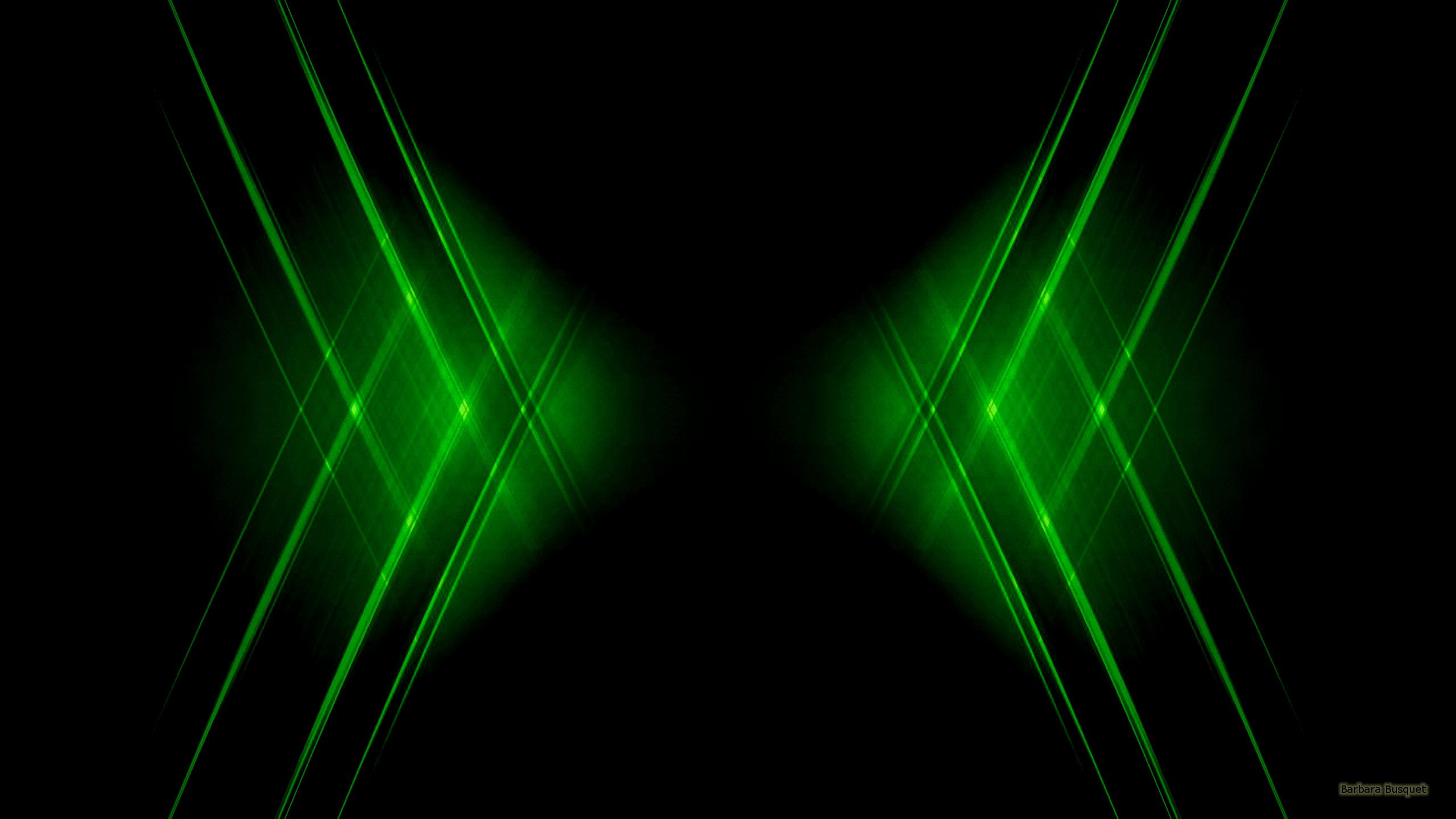 Black And Green Wallpapers On Wallpaperdog