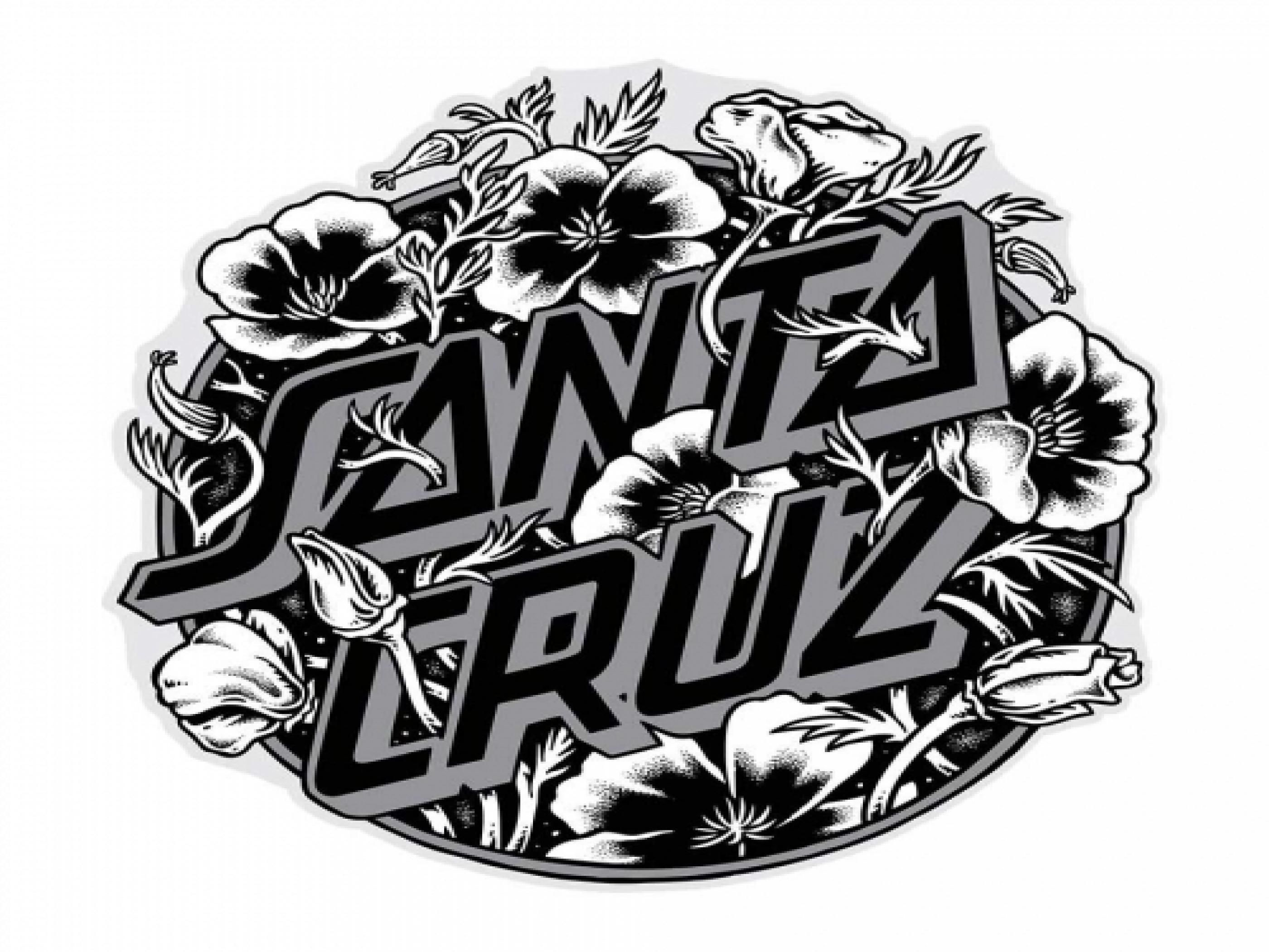 Santa Cruz Desktop Wallpapers On Wallpaperdog