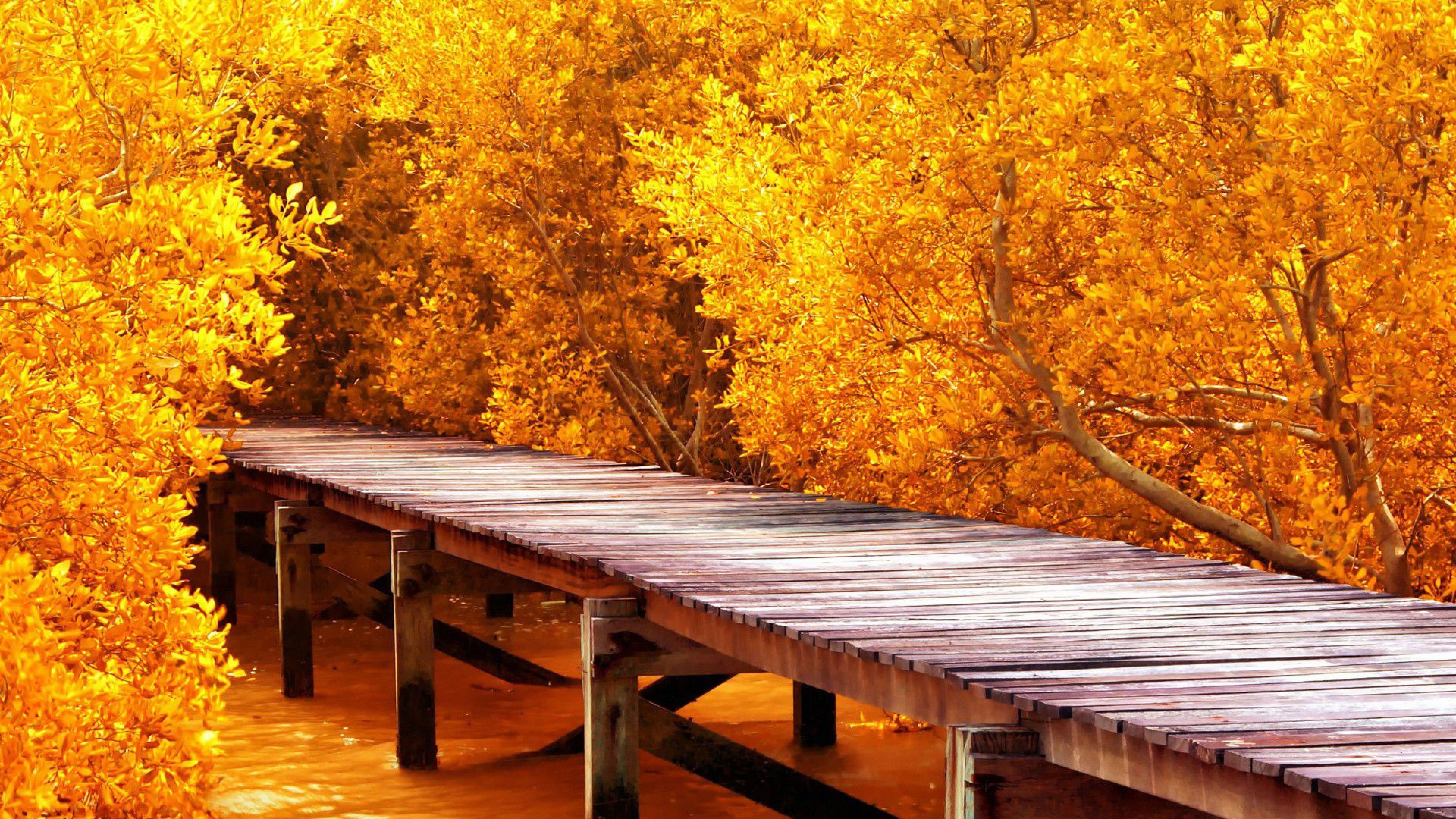 4k Ultra Hd Nature Wallpapers On Wallpaperdog