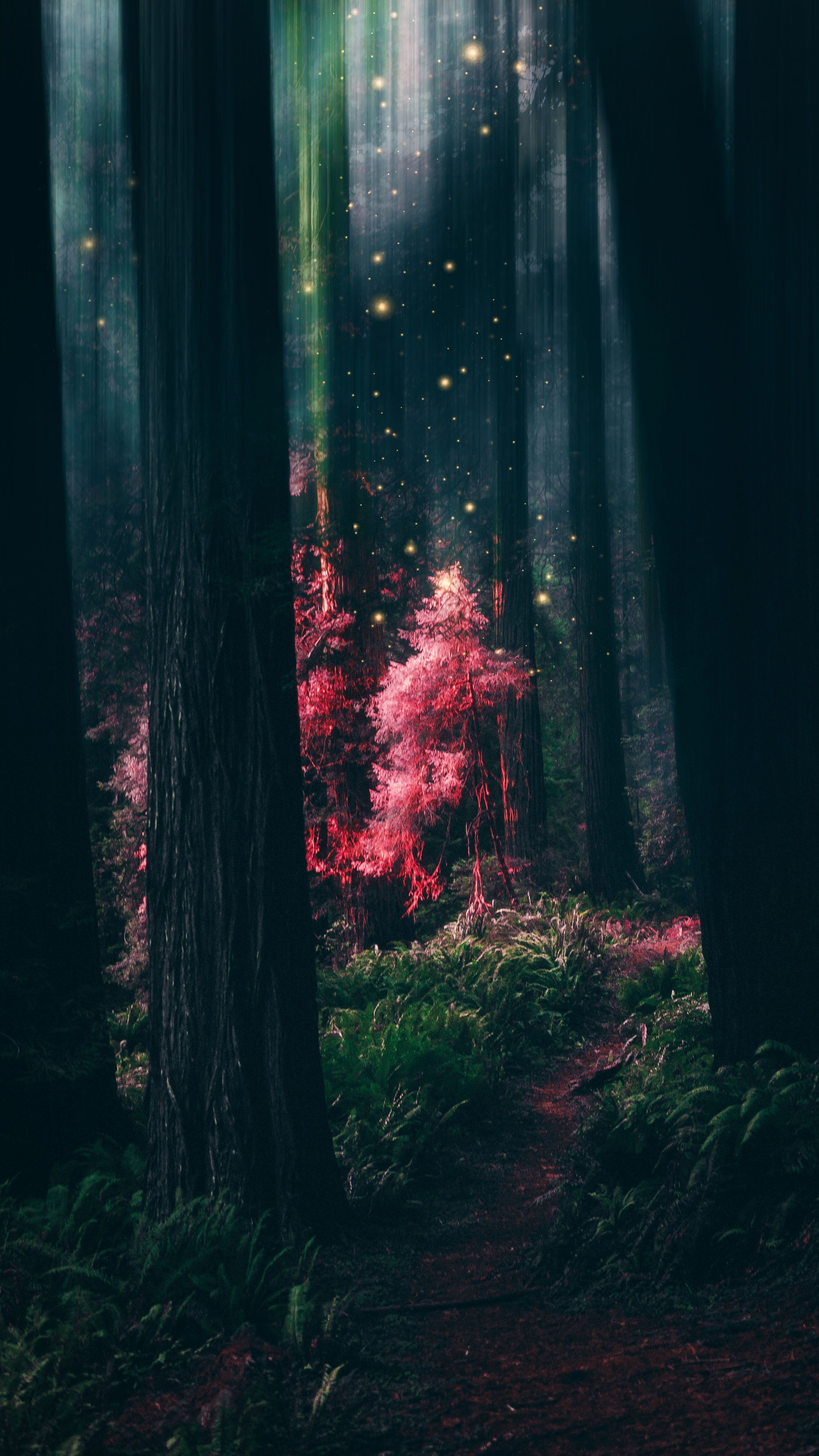 Japanese Forest Iphone Wallpapers On Wallpaperdog