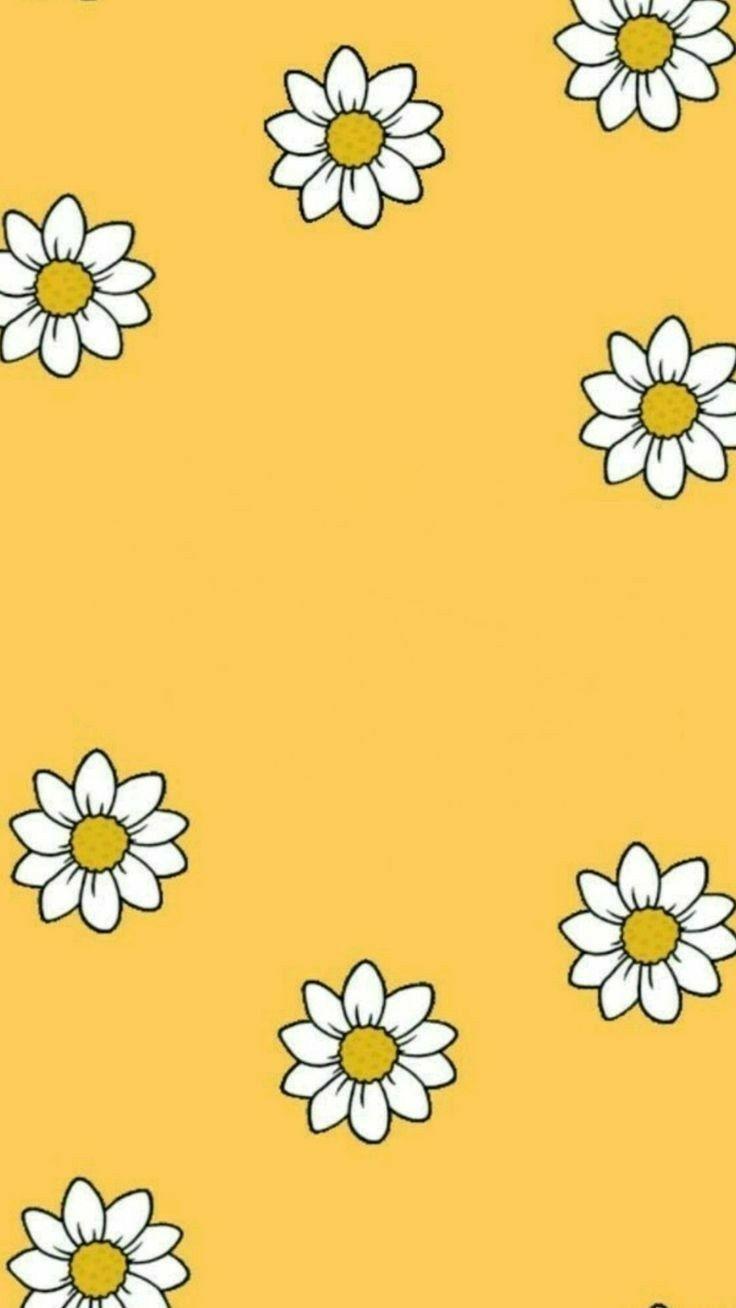 yellow flower aesthetic wallpapers on wallpaperdog