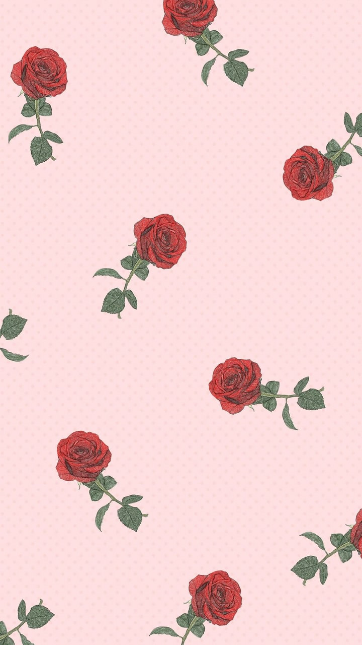 Cute Red Flower Wallpapers On Wallpaperdog