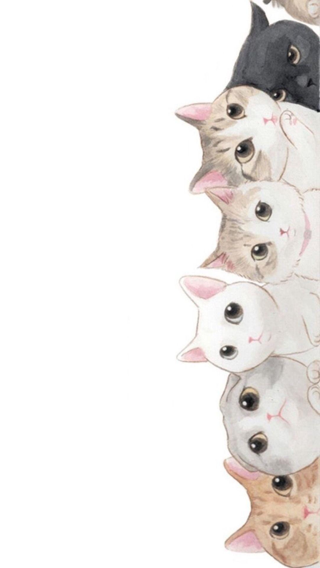 Pink Cat Wallpapers On Wallpaperdog