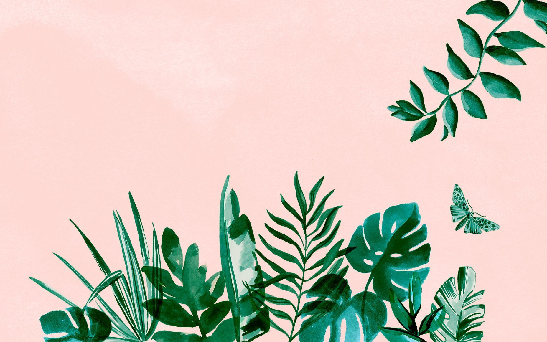 Plant Aesthetic Laptop Wallpapers On Wallpaperdog