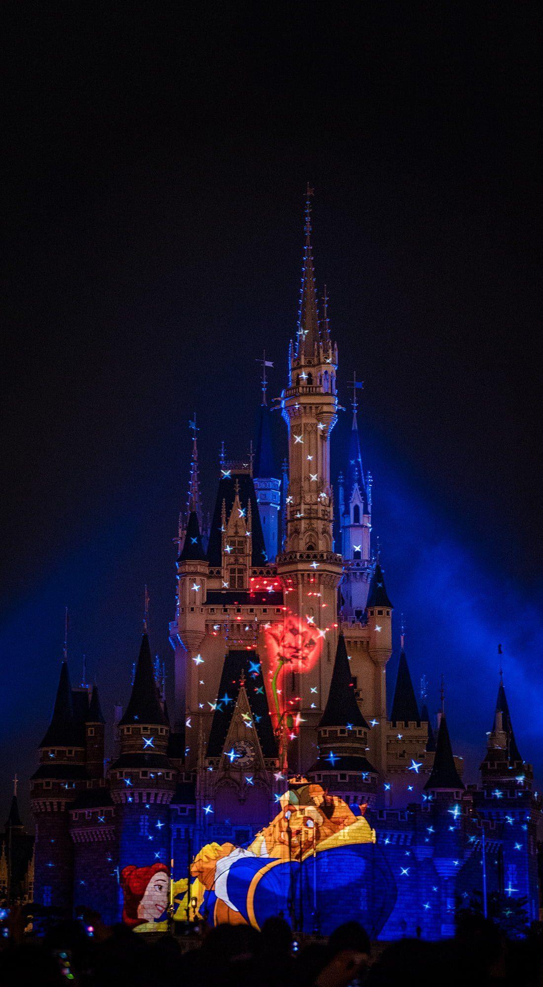 Disney Castle Desktop Wallpapers On Wallpaperdog