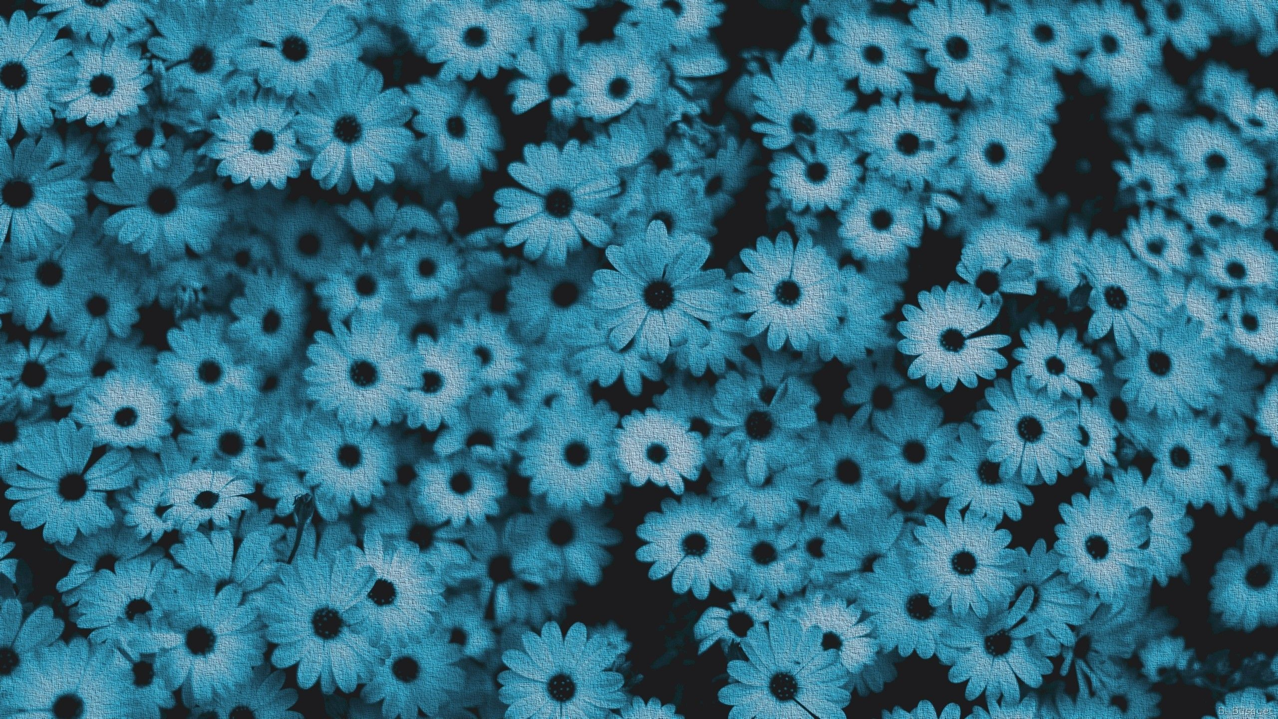 Blue Flower Aesthetic Desktop Wallpapers On Wallpaperdog