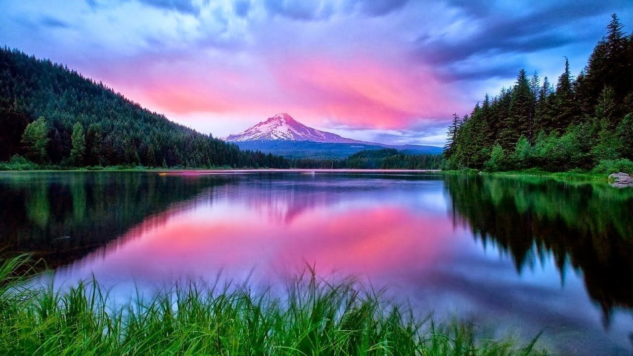 Really Cool Nature Pictures