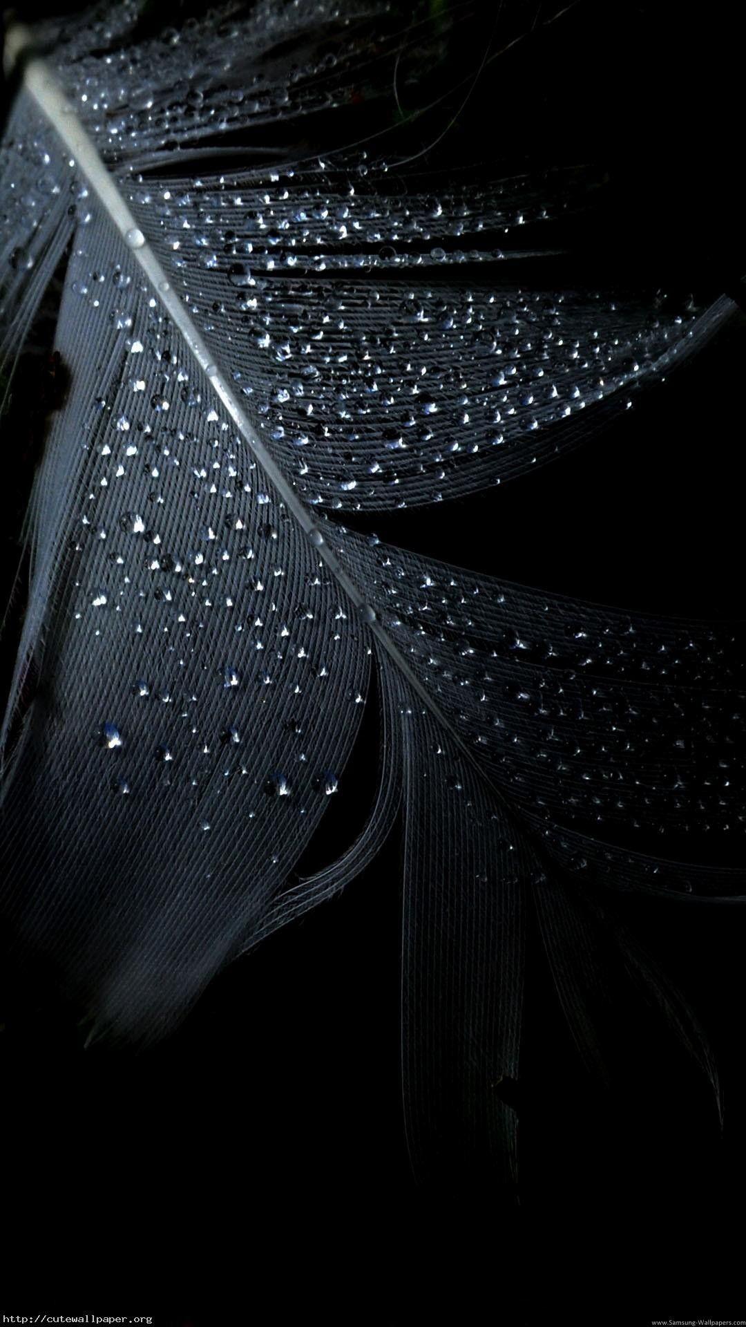Black Phone Wallpapers on WallpaperDog