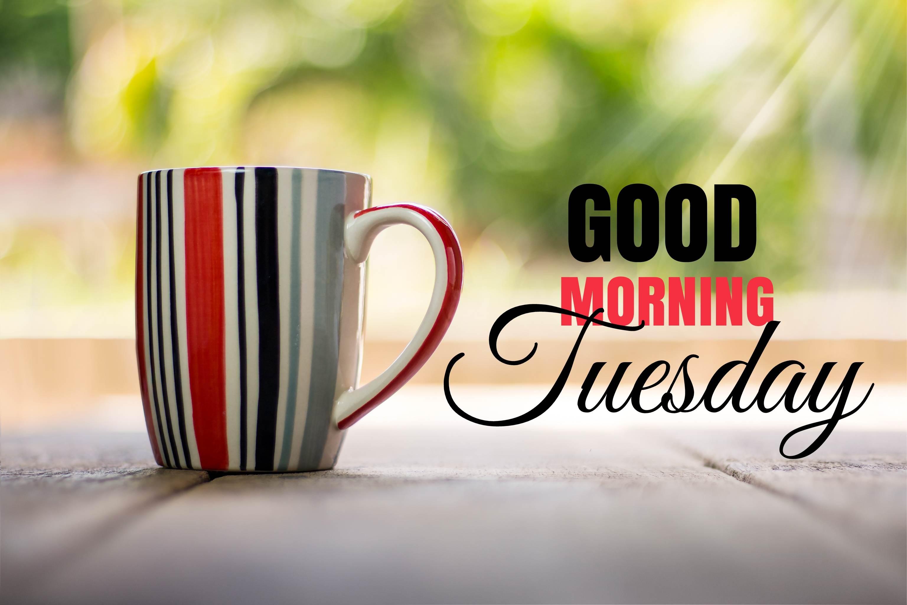 Good Morning Tuesday Wallpapers On Wallpaperdog