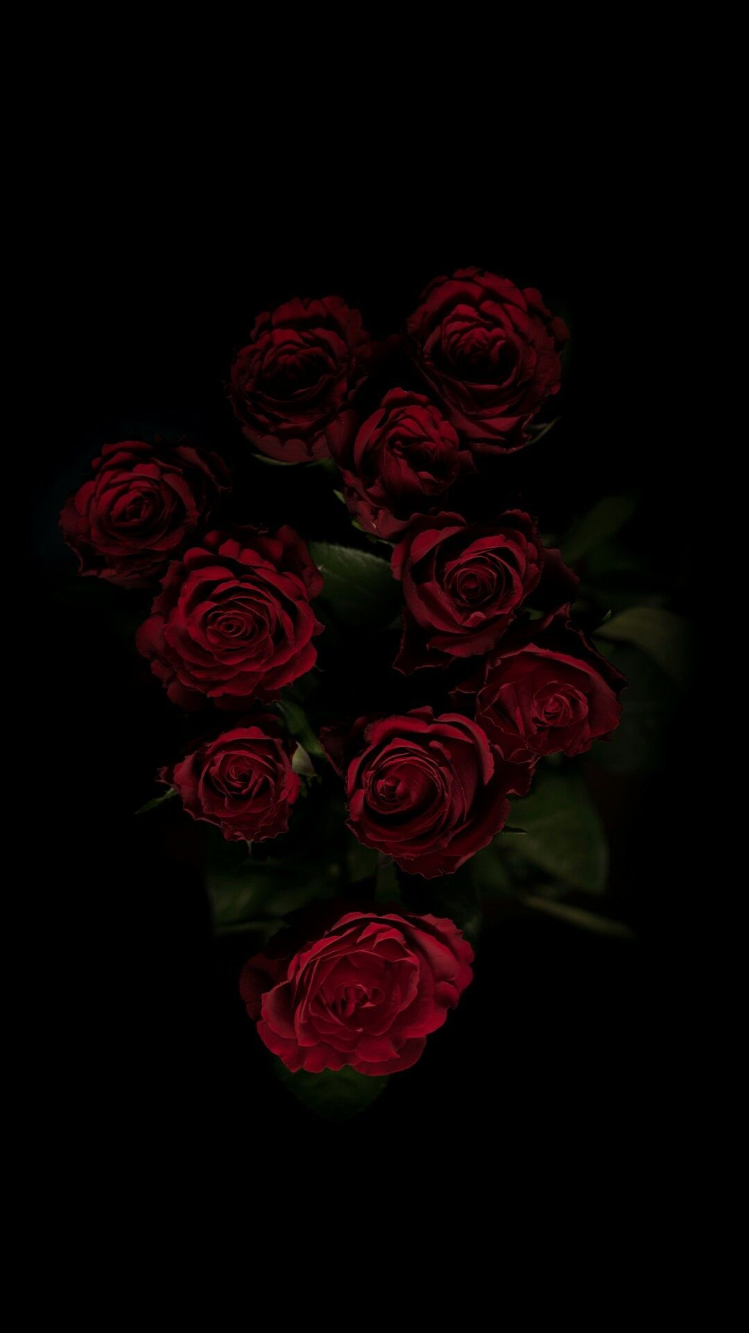 Dark Roses Aesthetic Wallpapers On Wallpaperdog
